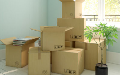What should you not store in a storage unit?