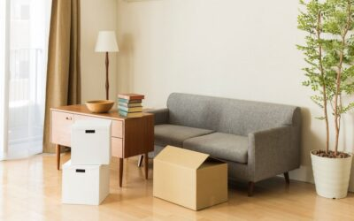 How to Keep Furniture from Moulding in Storage Units?