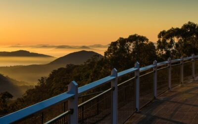 4 Best Real Estate Agents in Toowoomba